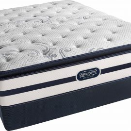Q Palm Plush Pillow Top Mattress